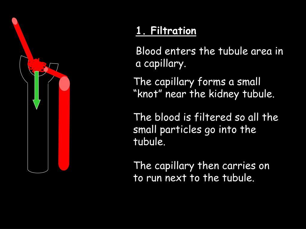 1. Filtration