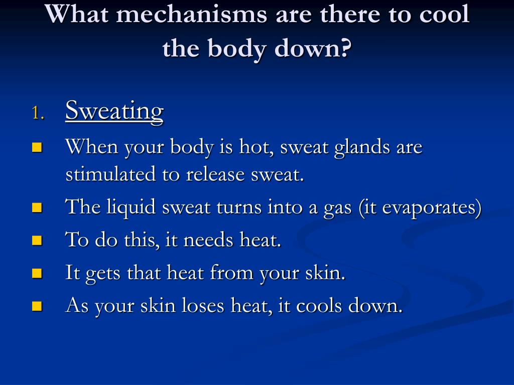 What mechanisms are there to cool the body down?