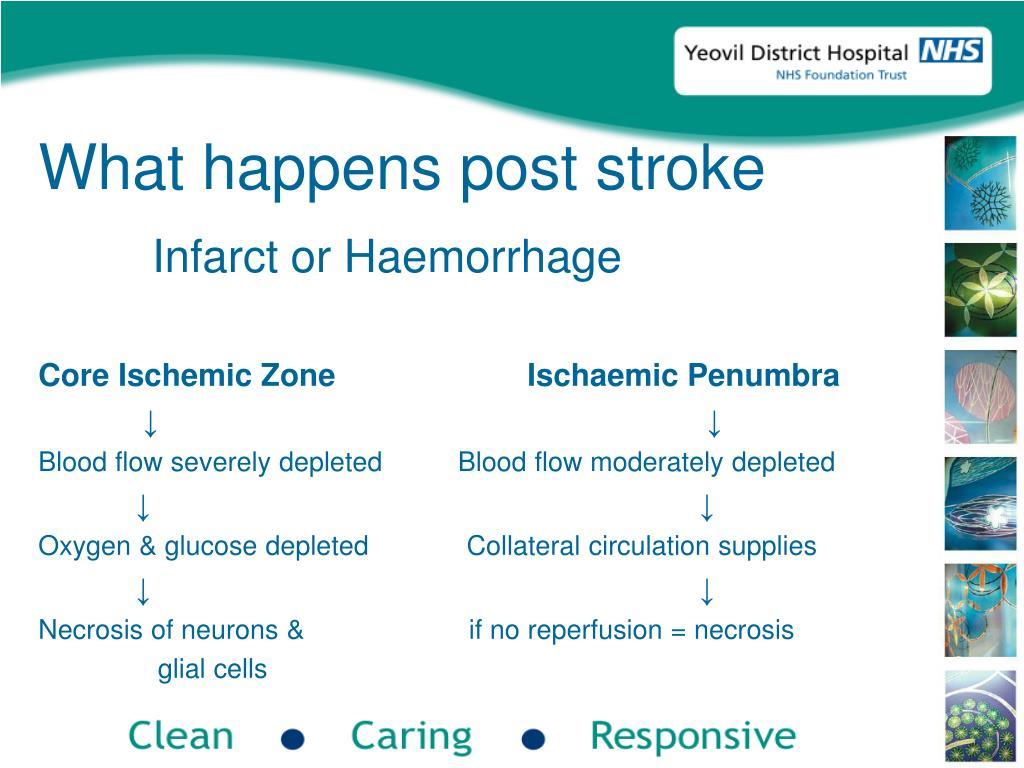 What happens post stroke