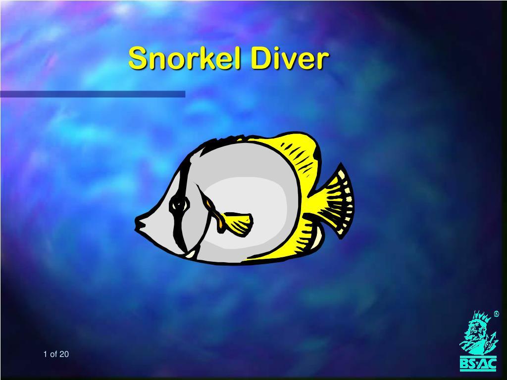snorkel diver l.