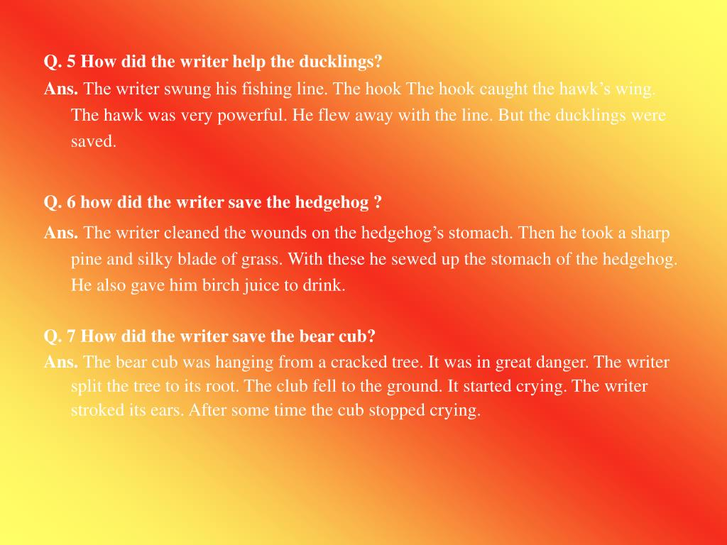 Q. 5 How did the writer help the ducklings?