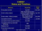 cam307 status and timelines