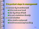 5 important steps in management51