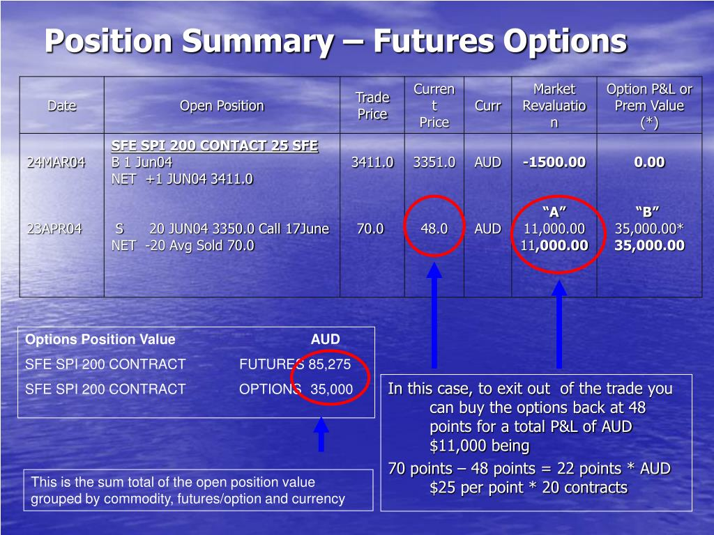 Position Summary – Futures Options
