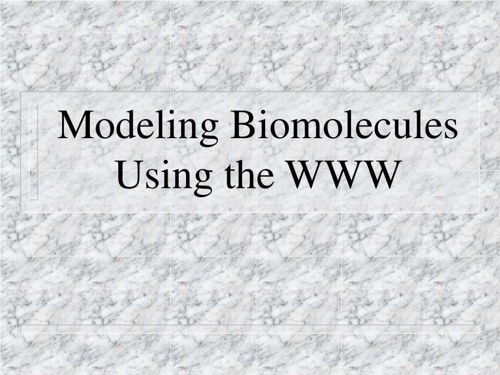 Modeling Biomolecules Using the WWW