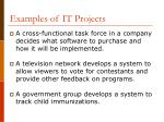 examples of it projects18