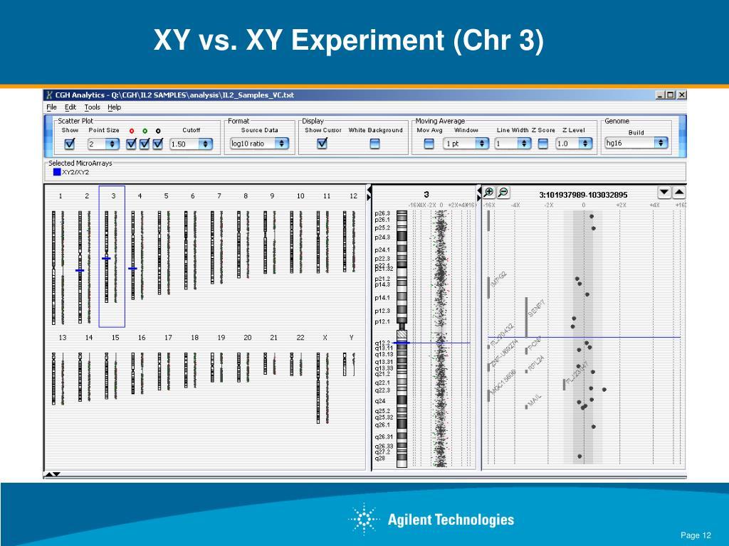 XY vs. XY Experiment (Chr 3)