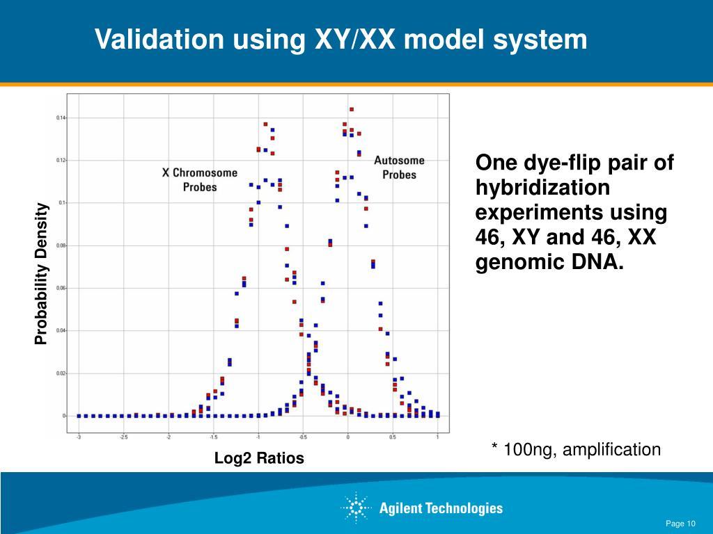 Validation using XY/XX model system