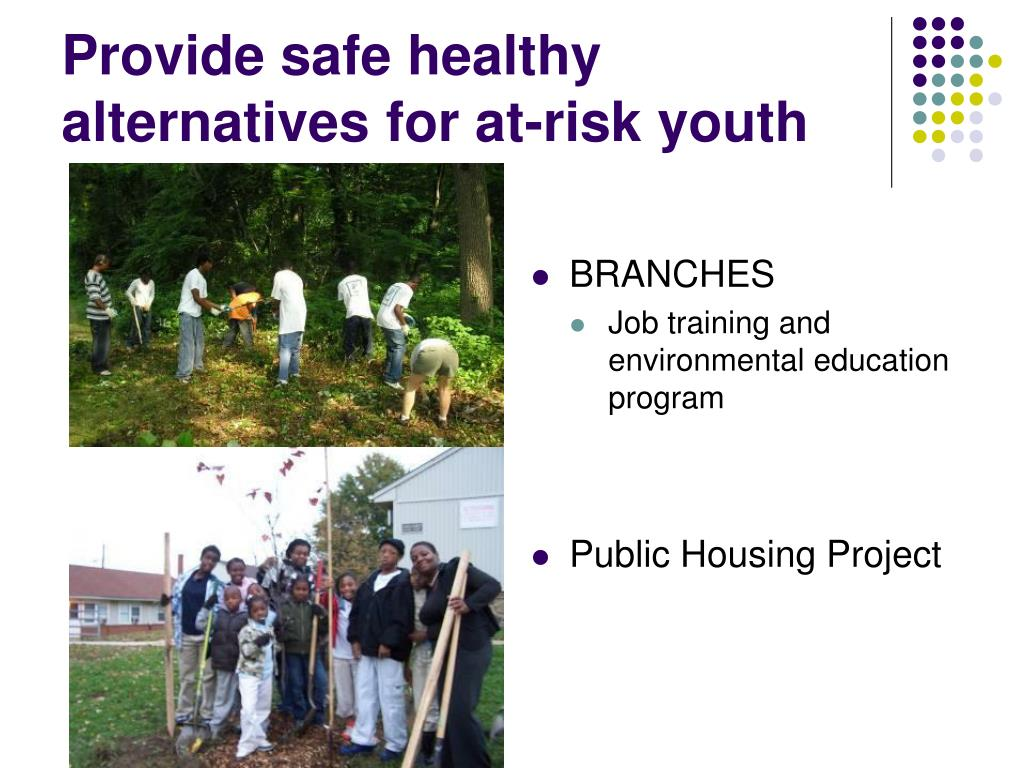 Provide safe healthy alternatives for at-risk youth