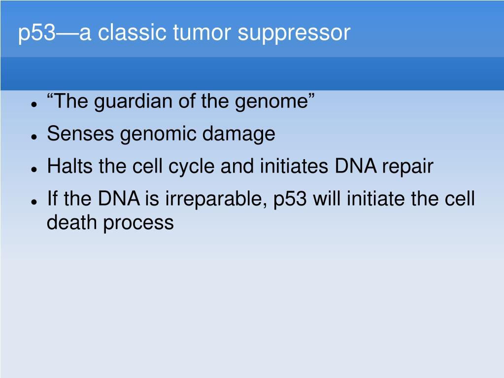 p53—a classic tumor suppressor