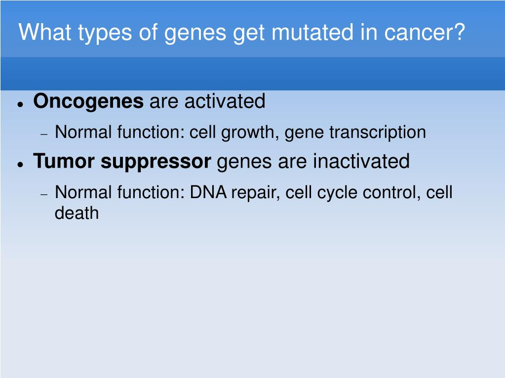 What types of genes get mutated in cancer?