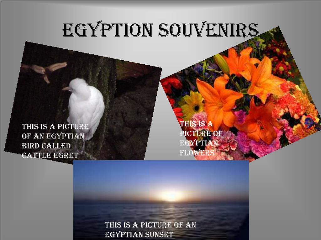 Egyption Souvenirs