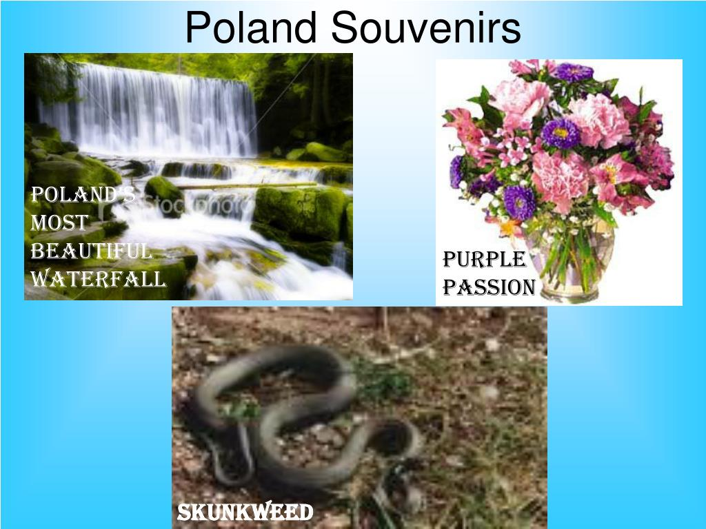 Poland Souvenirs