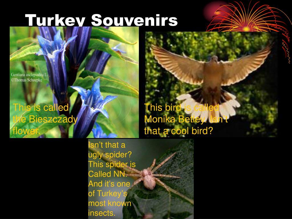Turkey Souvenirs