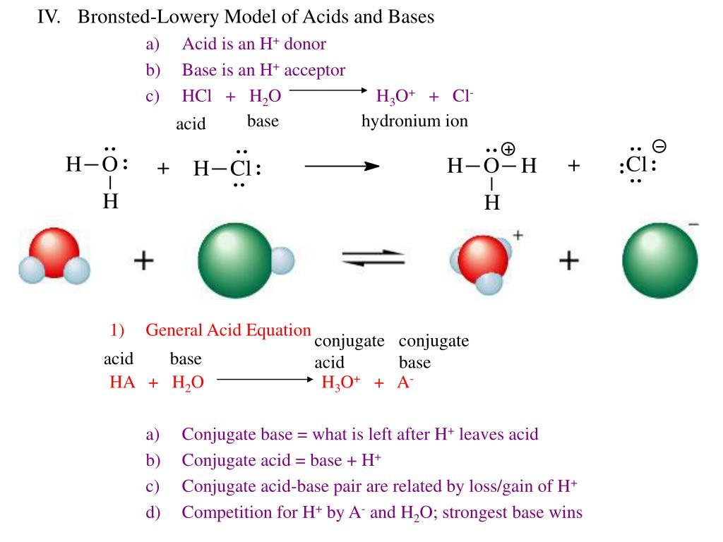 IV.Bronsted-Lowery Model of Acids and Bases