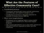 what are the features of effective community care1