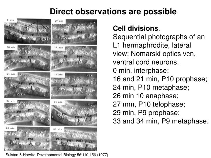 Direct observations are possible
