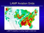 lamp aviation grids