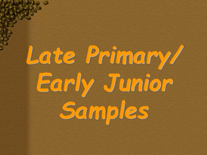 Late Primary/