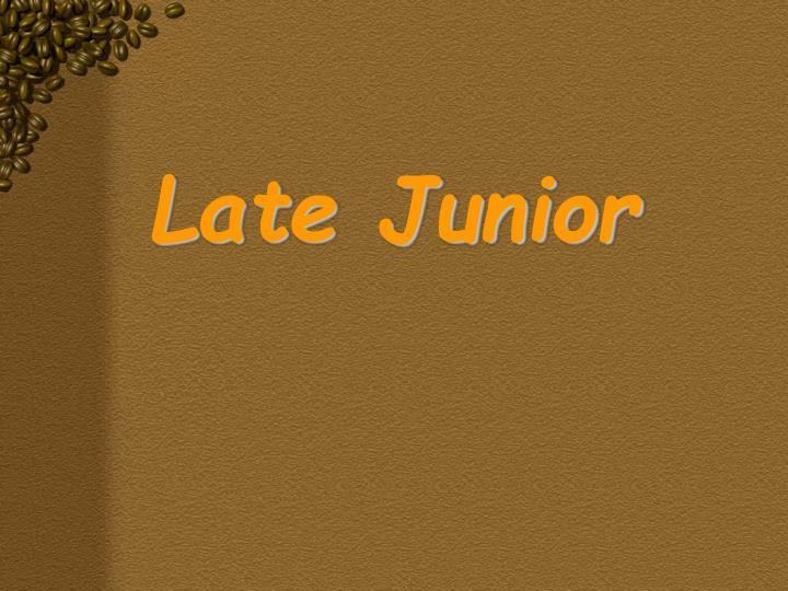 Late Junior