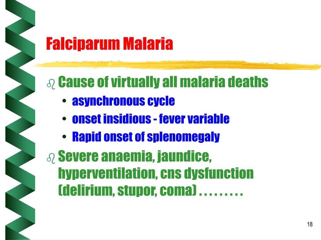 Falciparum Malaria