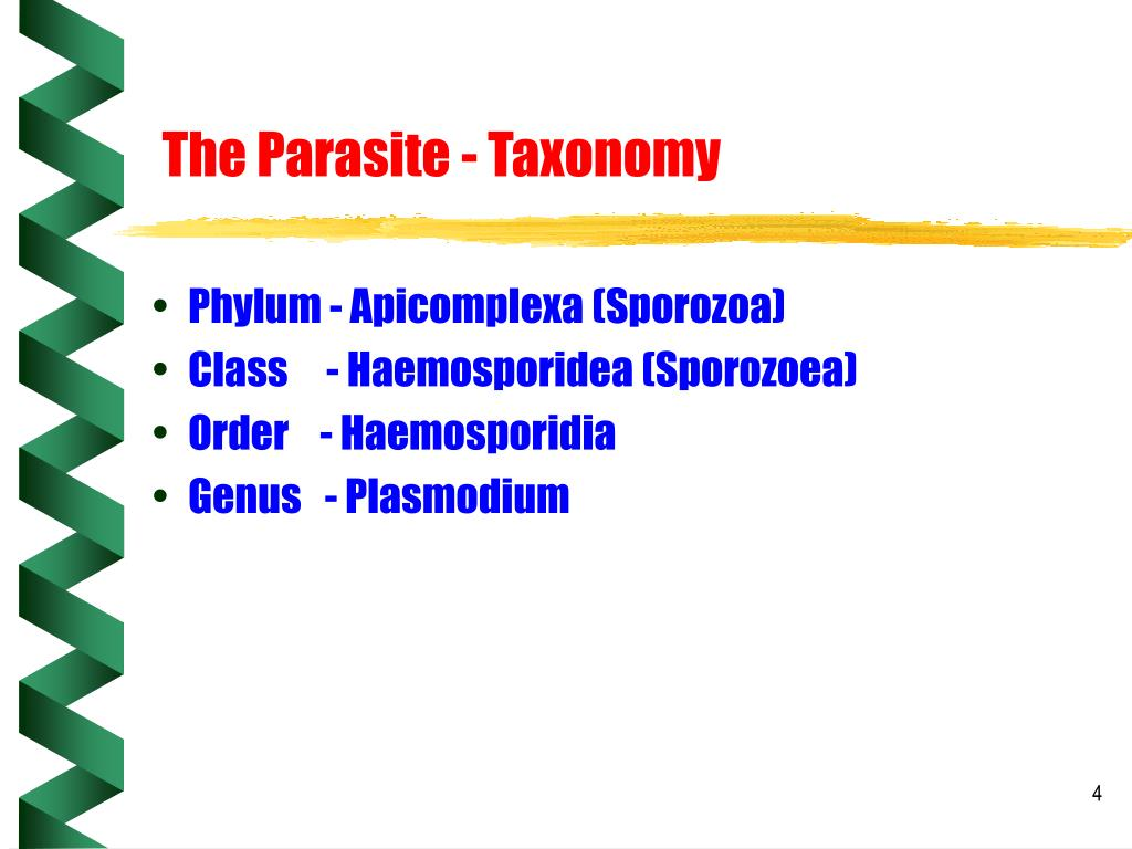 The Parasite - Taxonomy