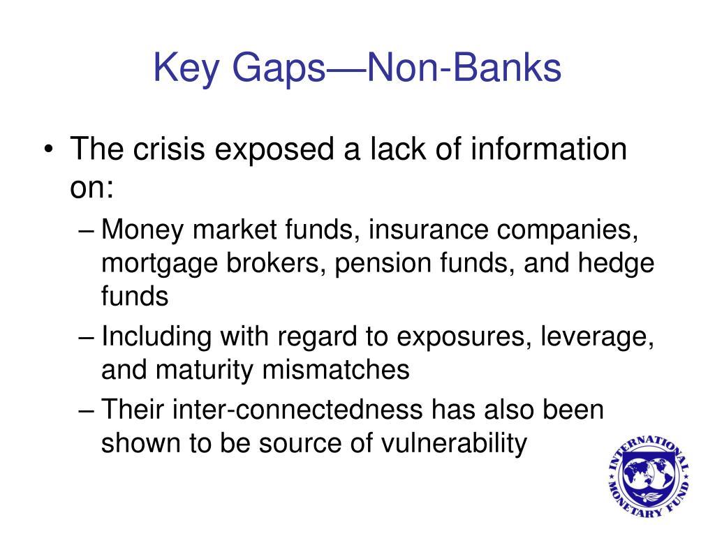 Key Gaps—Non-Banks