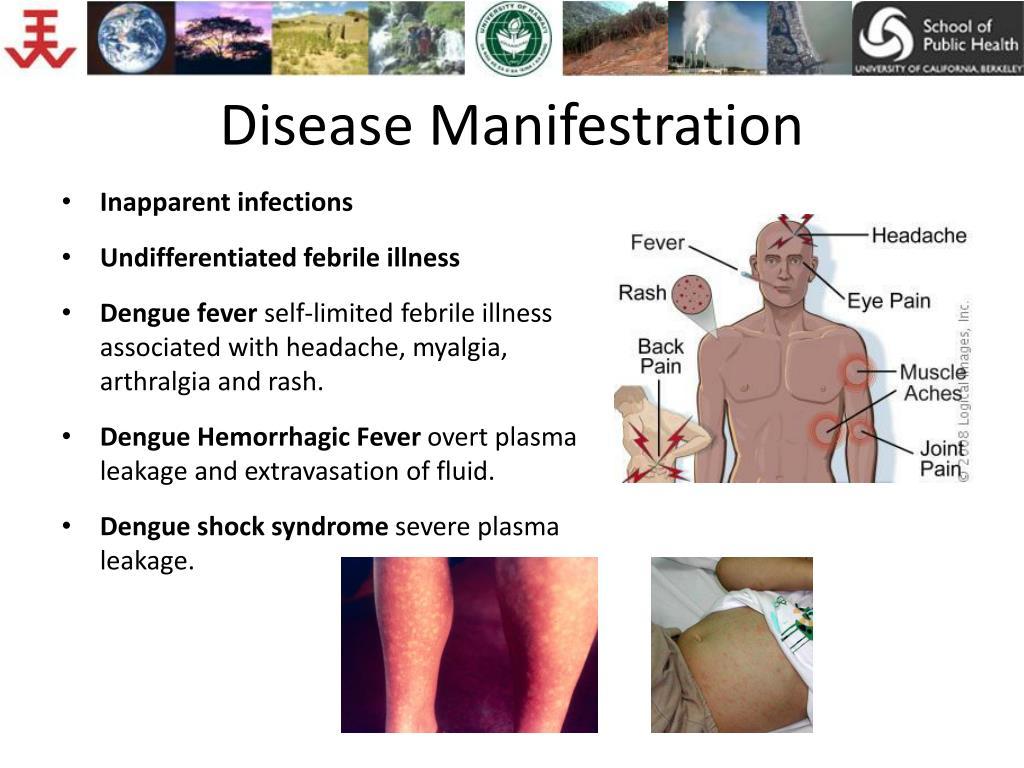 Disease Manifestration