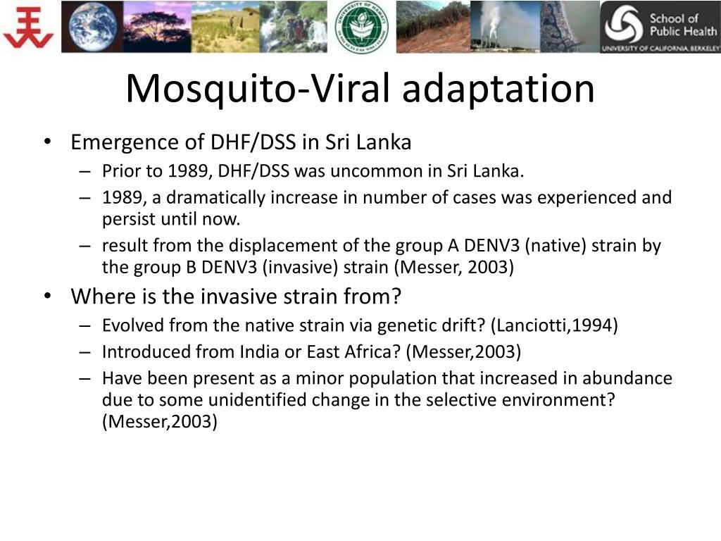 Mosquito-Viral adaptation