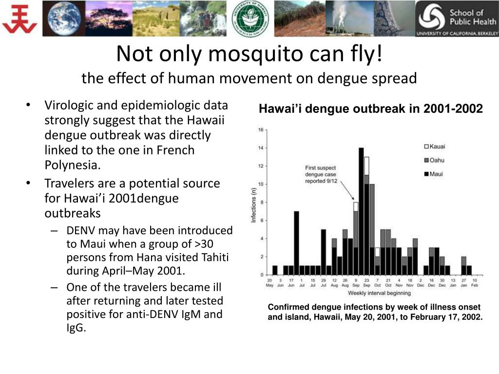 Virologic and epidemiologic data strongly suggest that the Hawaii dengue outbreak was directly linked to the one in French Polynesia.