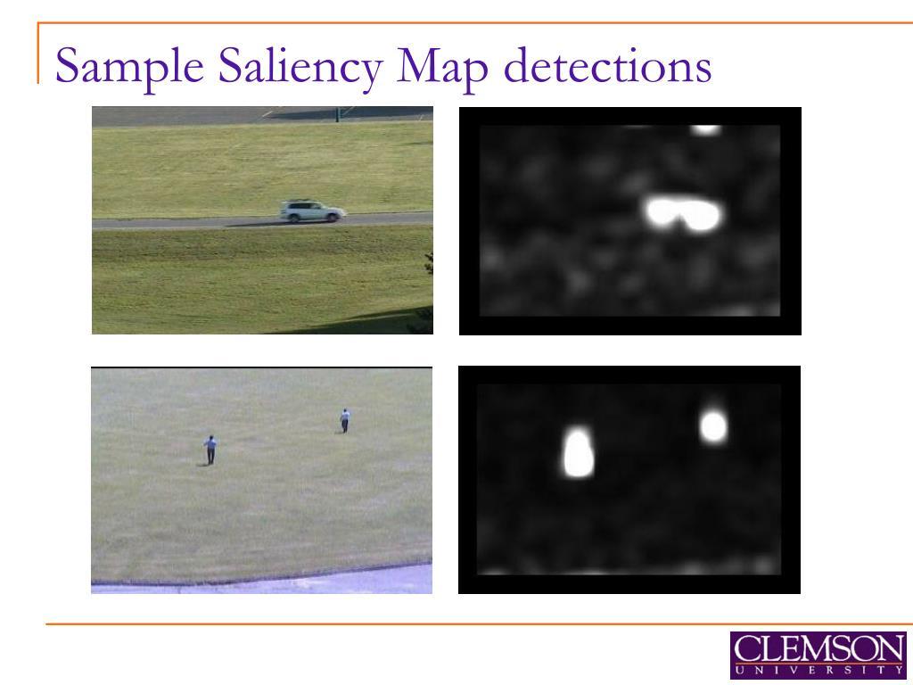 Sample Saliency Map detections