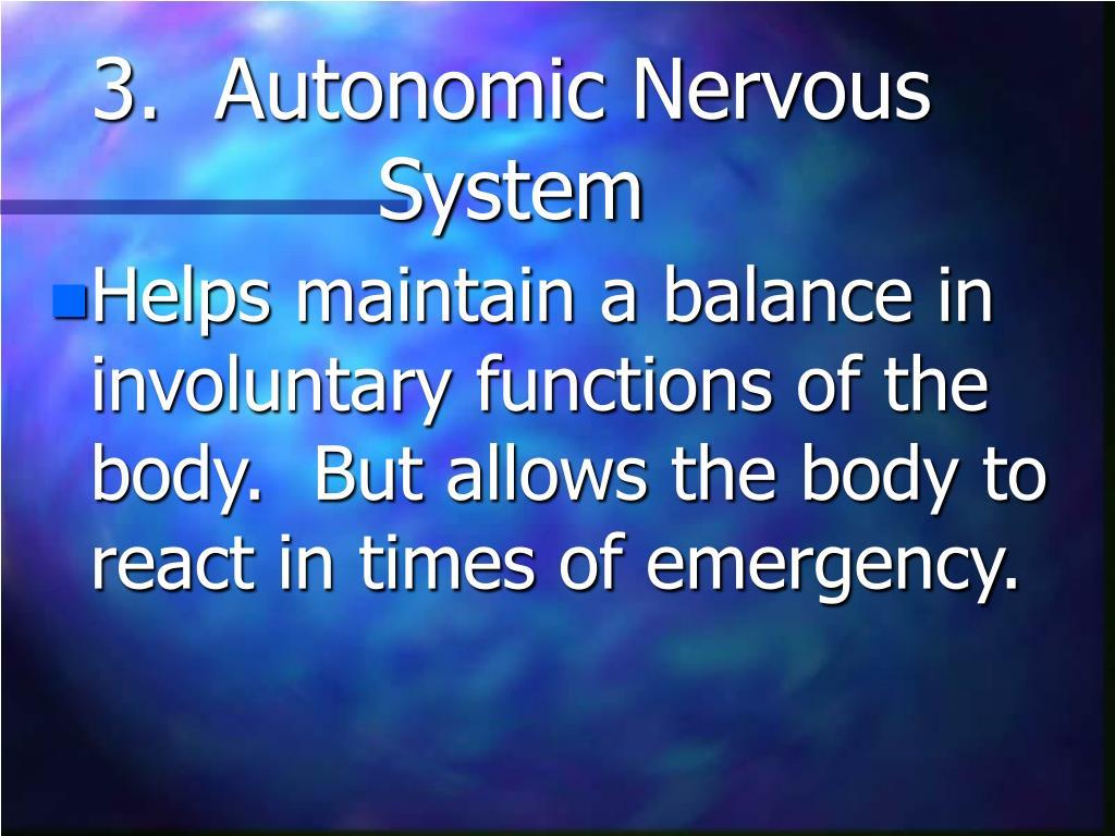 3.  Autonomic Nervous System