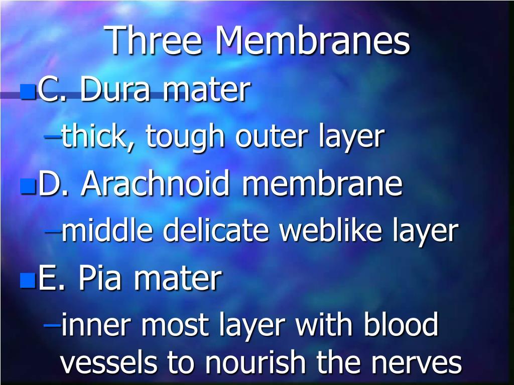 Three Membranes
