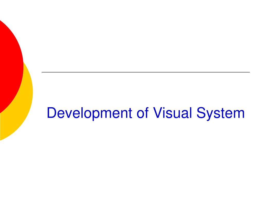 Development of Visual System