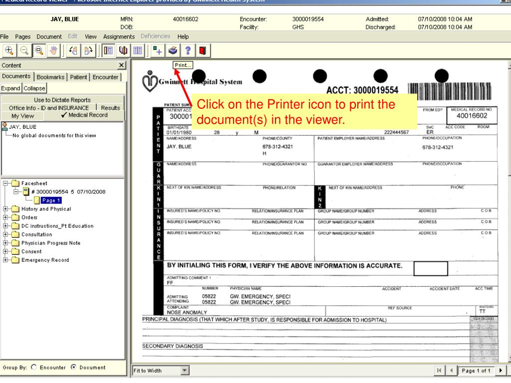 Click on the Printer icon to print the document(s) in the viewer.