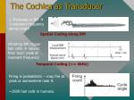 the cochlea as transducer