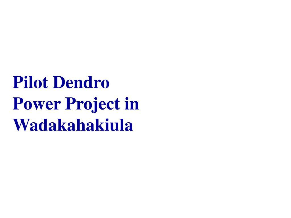 Pilot Dendro Power Project in Wadakahakiula