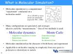 what is molecular simulation