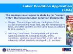 labor condition application lca10