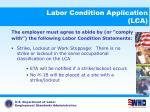 labor condition application lca11