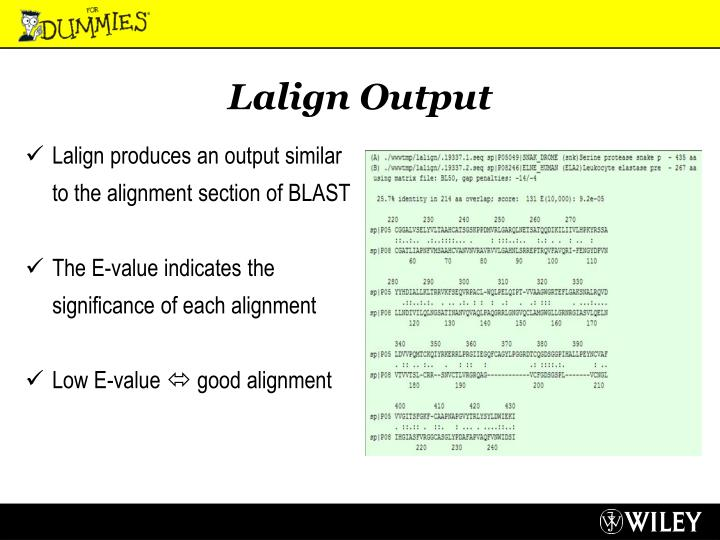 Lalign Output
