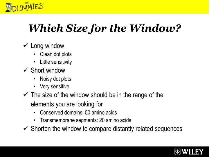 Which Size for the Window?