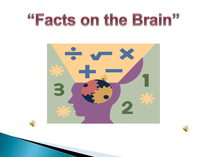"""Facts on the Brain"""