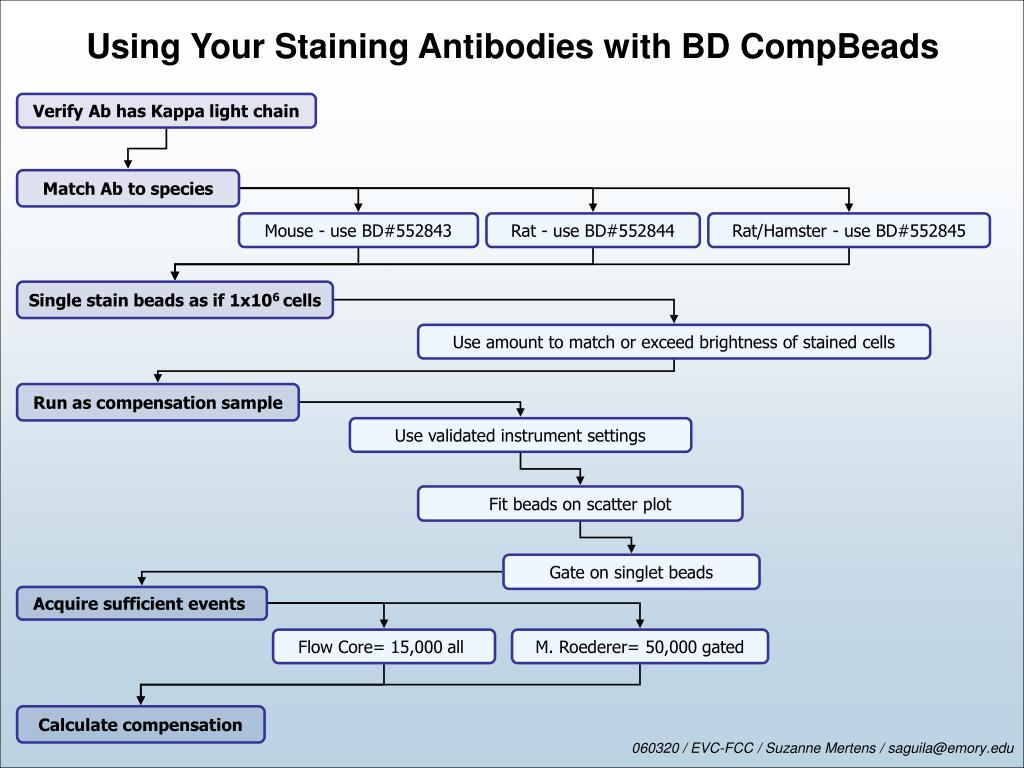 Using Your Staining Antibodies with BD CompBeads