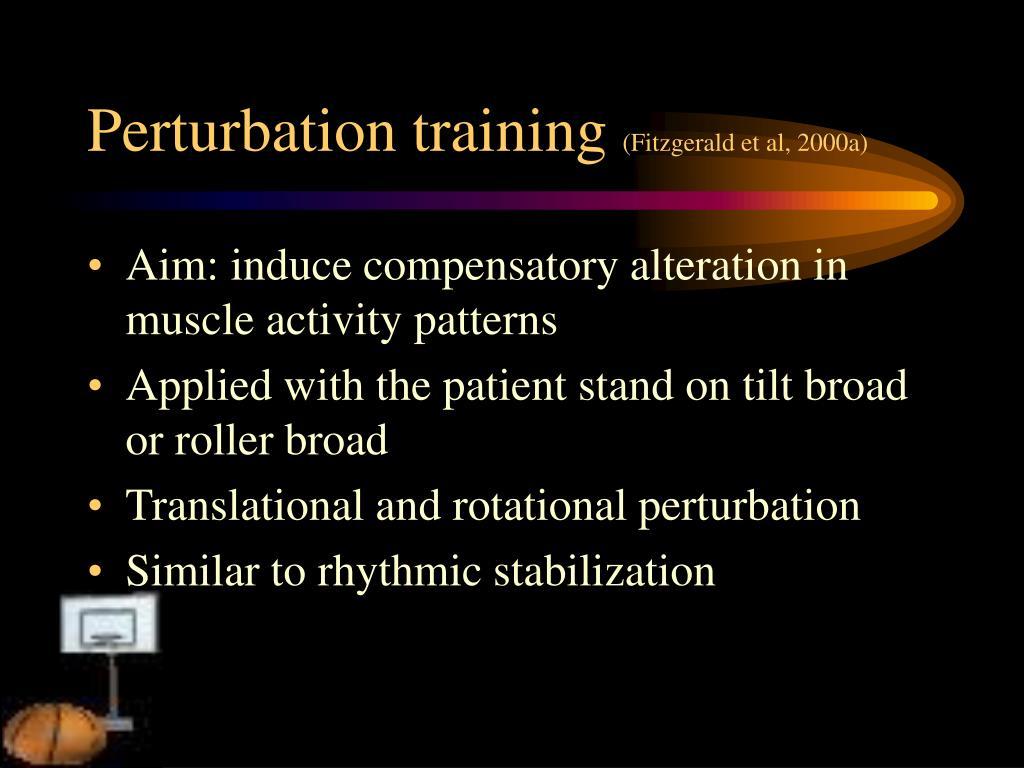 Perturbation training