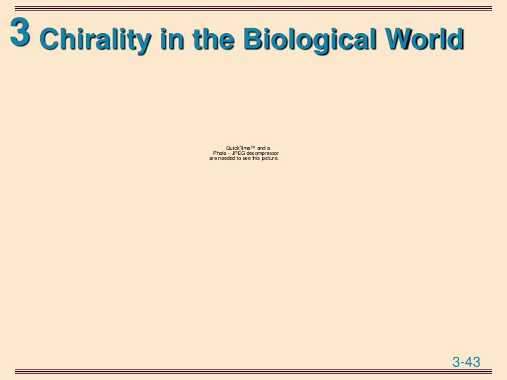 Chirality in the Biological World