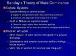 sanday s theory of male dominance33