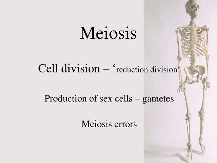 meiosis n.
