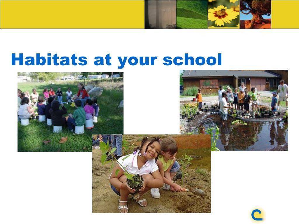 Habitats at your school