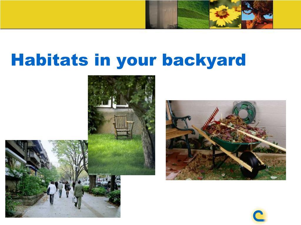 Habitats in your backyard